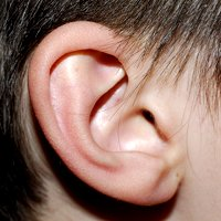 6 Apps &#038; Websites to Get Your Ear in Shape